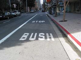 bus_stop_stop_bush.jpeg
